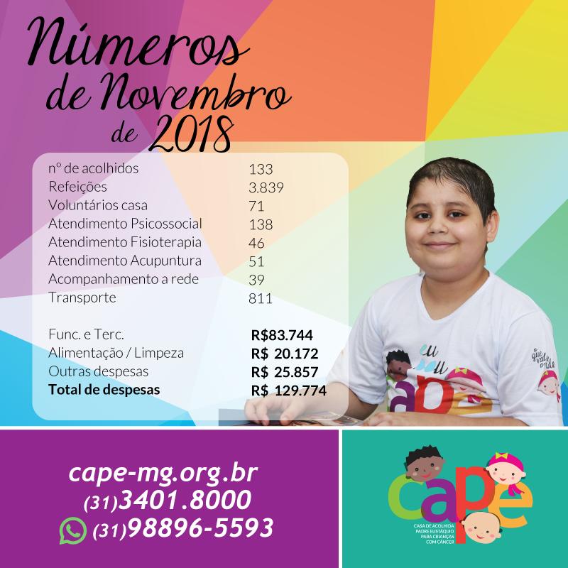 Números do Mês de Novembro 2018 – CAPE