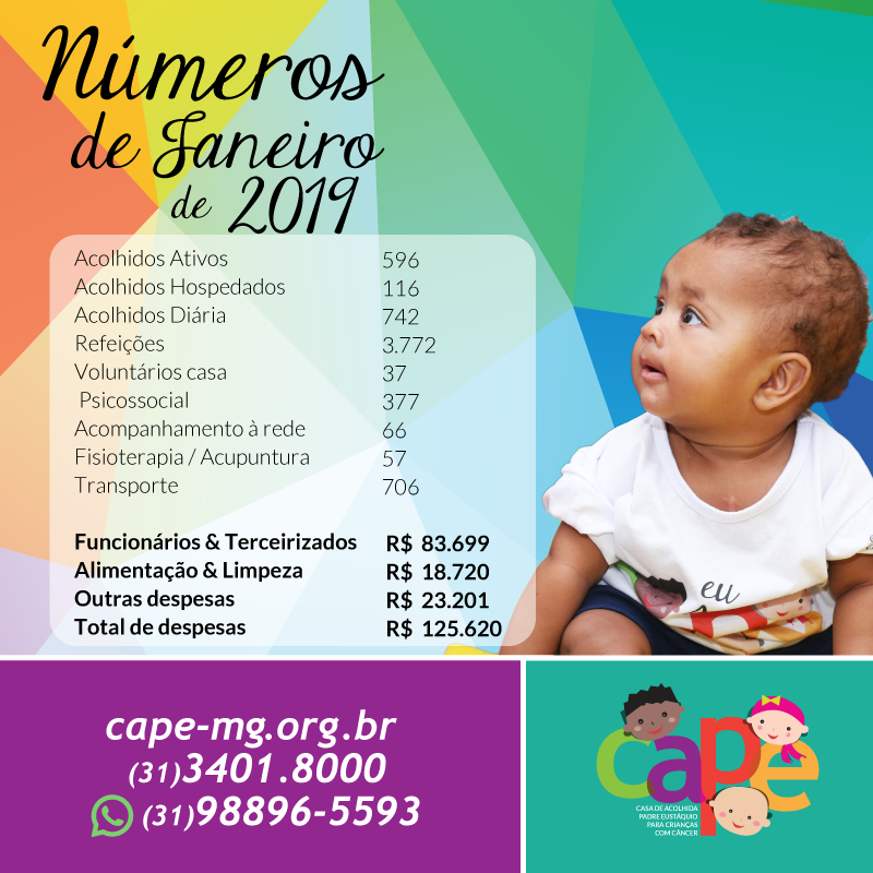 Números do Mês de Janeiro 2019 – CAPE